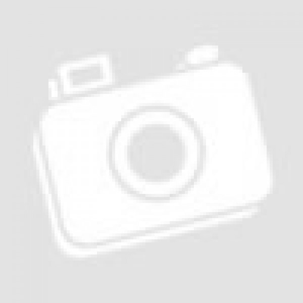 Pultvordach Urberach aus Aluminium AA544P